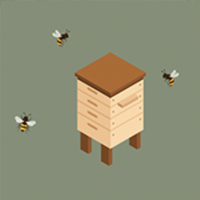 Beehive on roof of building
